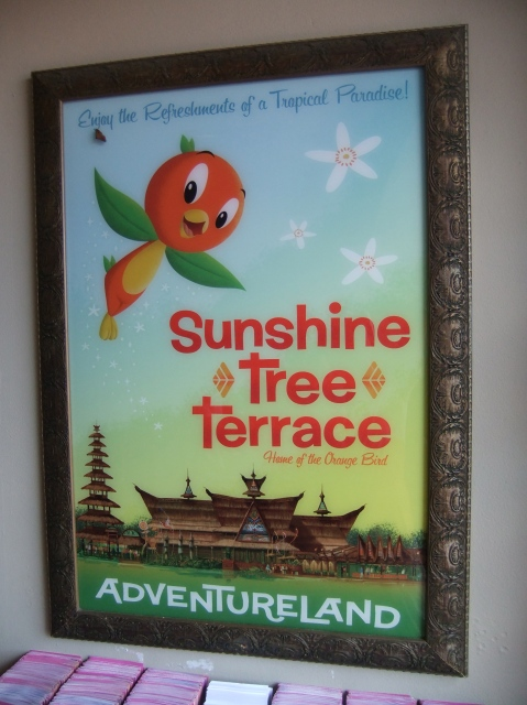 Poster at the Magic Kingdom