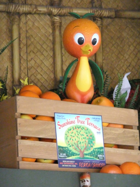 """Little Orange Bird..."""