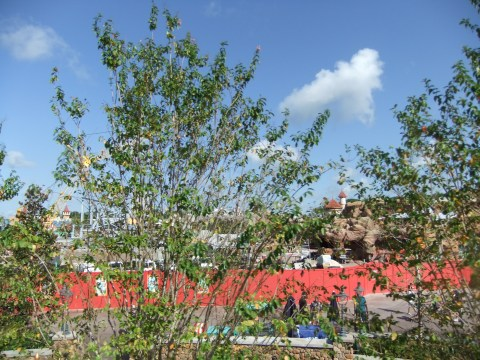 The mostly obscured view of the New Fantasyland construction from Dumbo