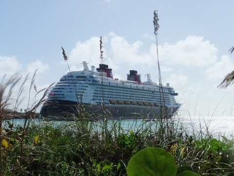 The Disney Fantasy as seen from Castaway Cay (photo by Miss Bonnie)