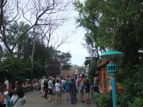 Bridge heading to Africa in Disney's Animal Kingdom