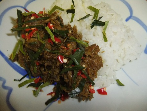 The finished Beef Rendang