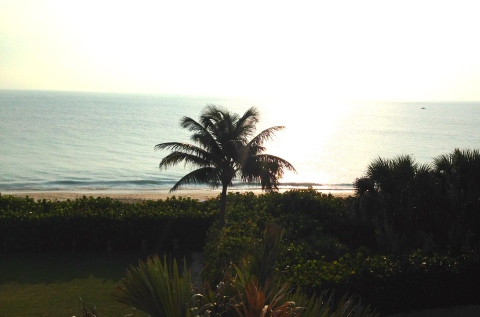 Early morning on the Treasure Coast - view from our room at Disney's Vero Beach Resort
